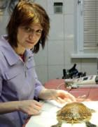 Рудова Наталья Александровна