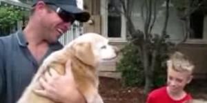 Воссоединение: собака вернулась домой после пятилетнего отсутствия