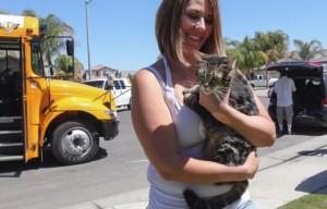 Спасение кошки, выброшенной из едущего грузовика