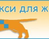 Зоотакси. Такси для животных