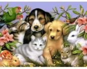 """Ветеринарная клиника """"Животный лекарь"""""""