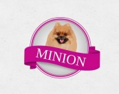 "Зоосалон ""Minion"""