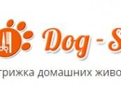 """Стрижка домашних животных """"DOG-SPA """""""