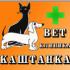 Ветеринарная клиника Каштанка