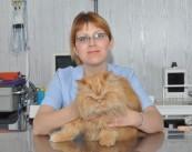 Болотова Ирина Игоревна