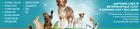 Сеть ветеринарных клиник Высота