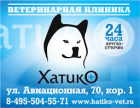 """Ветеринарная клиника """"Хатико"""""""