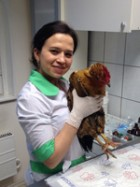 Ветеринарно-торговая служба «ВИТА»